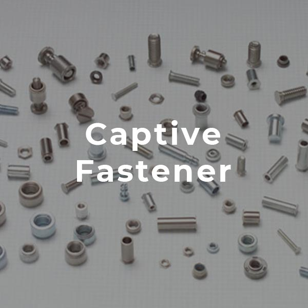 Captive Fastener